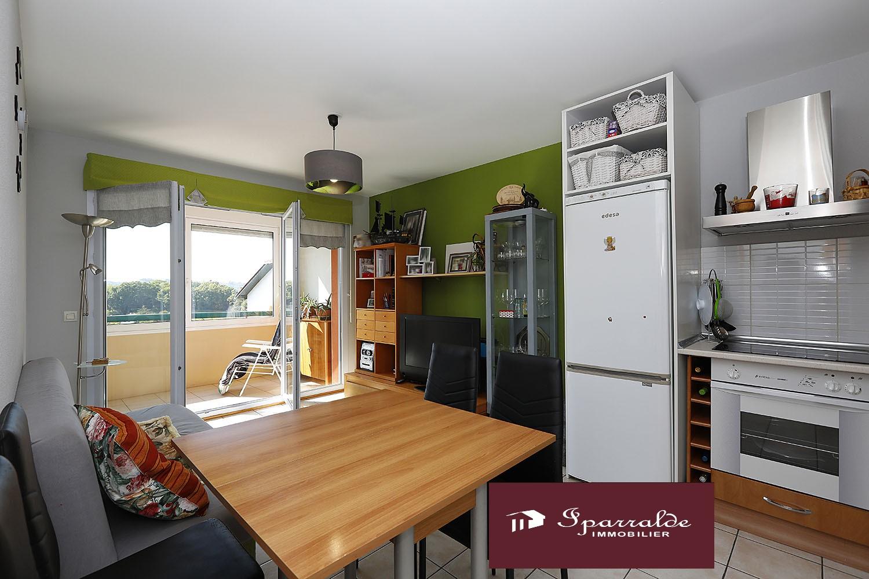 Hendaya: apartamento de tipo T2 (una habitación) con bonita terraza + trastero + parking  para comprar a 169000€